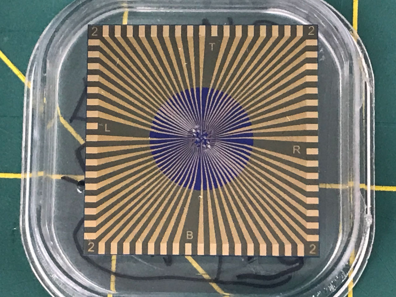 Example of the covid-flu dual test sensor chip up close. The chip is square with a striped pattern on top.