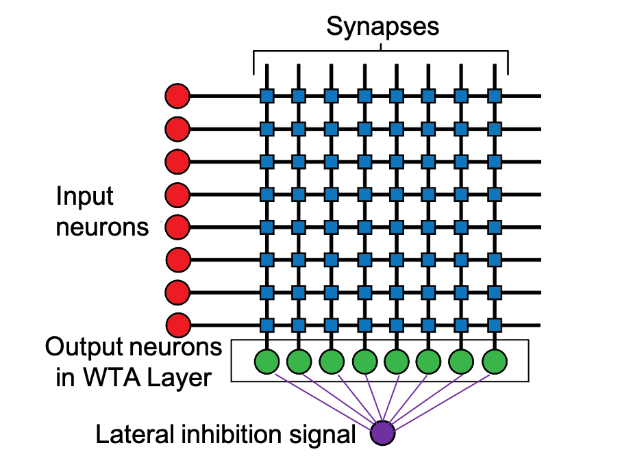 lateral inhibition magnetic processing